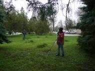 Дворники  группы хозяйственного обслуживания  и благоустройства администрация  ГГМО РК в городе  начали покос травы