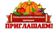 13 января 2019 года в д. Копцевы Хутора состоится областная ярмарка!