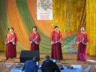 Районный фестиваль народного творчества «Нам года не беда»