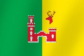 Флаг Администрации Рамонского муниципального района Воронежской области
