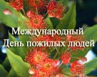 Внимание!!! Празднование Международного Дня пожилых людей