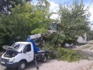 Работники    группы  хозяйственного обслуживания и благоустройства  оказывают помощь  по спилу и выкорчевыванию деревьев