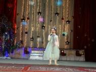 28 декабря в МБУК «Феникс» прошёл праздничный концерт «Новогодний парад звезд»