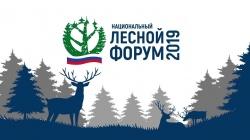 В Кирове состоялся III межрегиональный Лесной форум