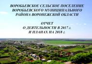 Глава Воробьевского сельского поселения выступил с отчетом в Правительстве Воронежской области