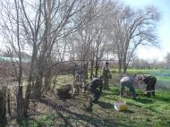 Дворники группы хозяйственного обслуживания и благоустройства администрации ГГМО РК продолжают  вырубку сухих деревьев по пер.Студенческий.