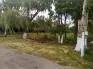 Жители благоустраивают территорию будущего парка.
