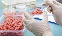 Пищевая революция: мясо из пробирки, растительного белка и копия на 3D-принтере