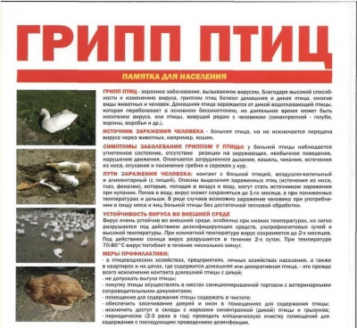 Информация по птичьему гриппу