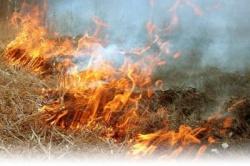 О запрете сжигания сухой травы, стерни