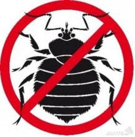 Информация о проведении акарицидной обработки, дезинсекции комаров