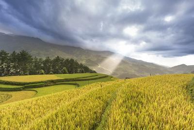 Утверждена программа комплексного развития сельских территорий на 2020 - 2025 годы