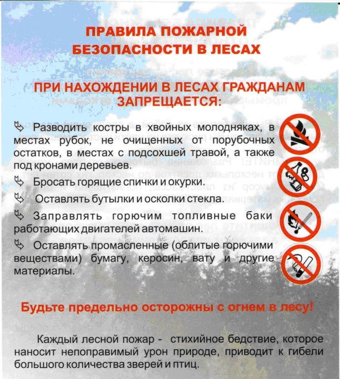 Правила пожарной безопасности в лесах