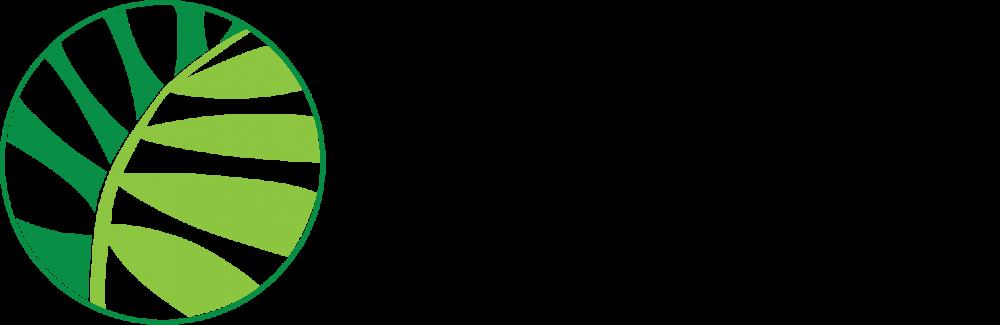 """Международная научно-практическая конференция """"Зеленая инфраструктура городской среды: современное состояние и перспективы развития"""""""