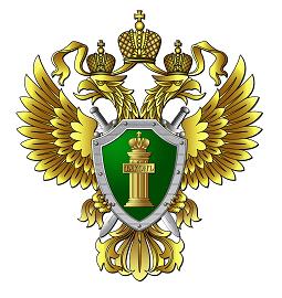 Прокуратура Калужской области контролирует качество и безопасность детского отдыха