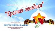 """Всероссийская акция """"Крассная гвоздика"""""""