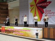 Дни культуры в Воронеже
