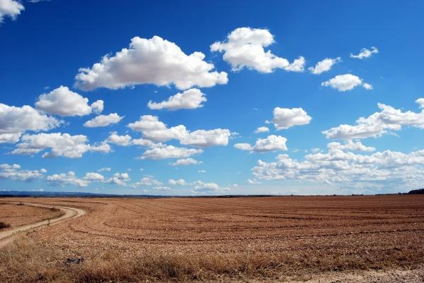 Правовые основы землепользования в Российской Федерации