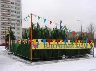 В преддверии новогодних праздников на территории Воронежской области с 20 по 31 декабря 2018 года пройдет областная акция «Операция «Ель».