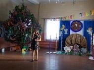 «Рождественские забавы»