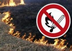 Требования пожарной безопасности при уборке зерновых культур