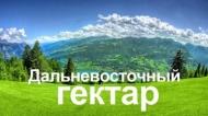 «Дальневосточный гектар» можно будет получить в Бурятии и Забайкалье