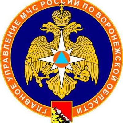 С 1 апреля 2020 года на территории Воронежской области установлен особый противопожарный режим