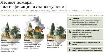 Классификация лесных пожаров