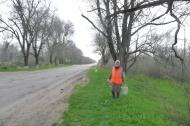 Садовники группы хозяйственного обслуживания и благоустройства администрации ГГМО РК и МУП «Благоустройство» продолжают побелку деревьев в городе.