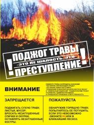 Ответственность за нарушение правил пожарной безопасности в лесах и поджог травы