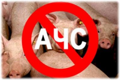 Памятка для владельцев свиней