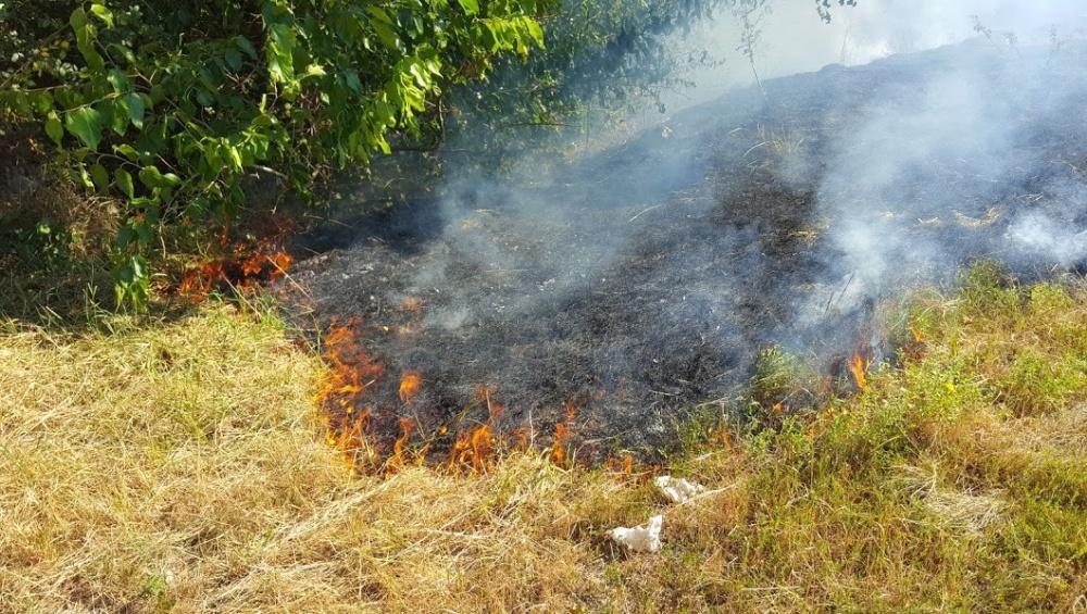 Управление Росреестра по Вологодской области предупреждает