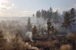 Чрезвычайная пожарная опасность лесов
