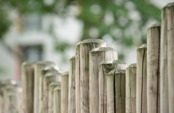 Особенности расчета налога за садовые, огородные и дачные участки