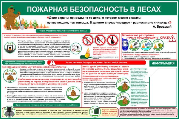 Пожарная безопасность в лесах