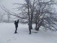 Экологическая акция «Покорми птиц зимой»