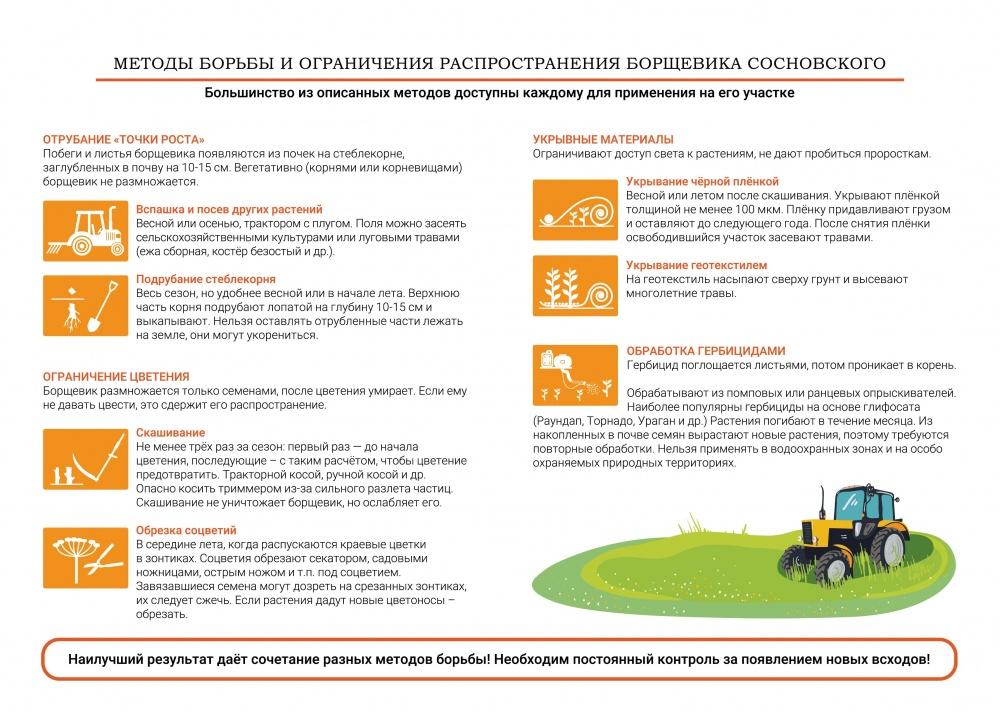 Методы борьбы и ограничения распространения борщевика сосновского
