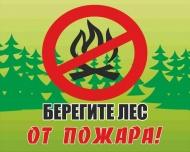 Не разжигайте костёр в лесу!