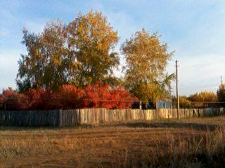 Золотая осень в п. Масленниково