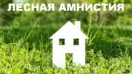 В Вологодской области пройдет «горячая» линия по вопросам реализации Федерального закона «о лесной амнистии»