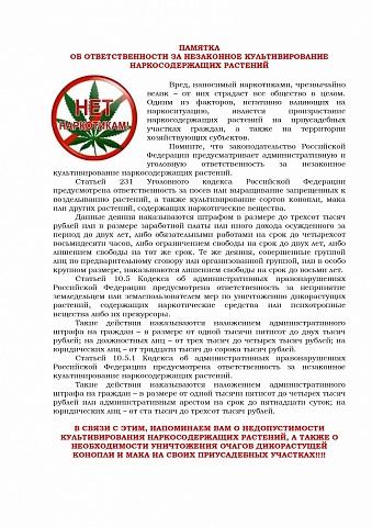 Об ответственности за незаконное культивирование наркосодержащих растений
