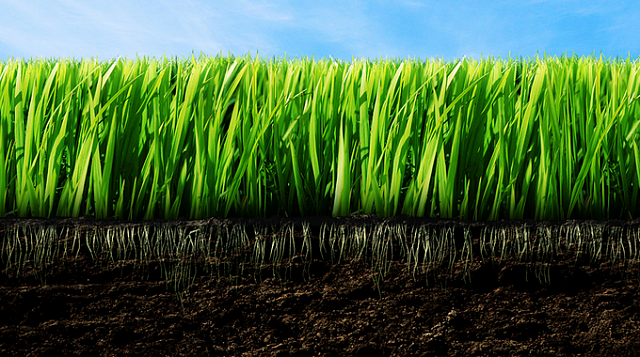 Извещение  в соответствии с Федеральным законом от 27 июля 2002 года № 101-ФЗ «Об обороте земель сельскохозяйственного назначения»