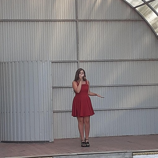 г. Семилуки, летняя площадка, концерт Семилукского СДК