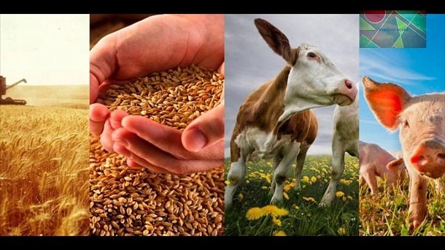 Уважаемые сельхозтоваропроизводители!
