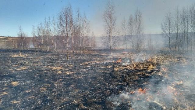 О введении особого противопожарного режима на территории Никольского сельского поселения Костромского муниципального района