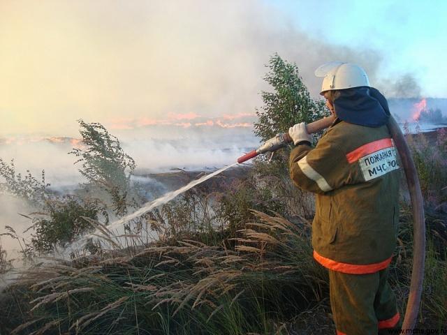 На территории Орловской области введен особый противопожарный режим