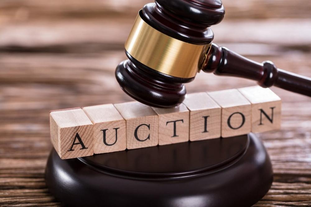 22 декабря 2020 года - аукцион по с/х землям