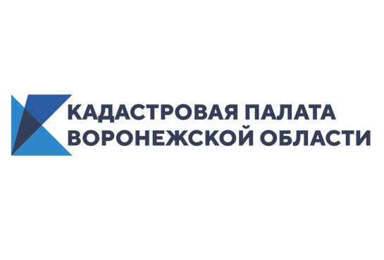 Кадастровая палата Воронежской области подробно расскажет об одном из способов образования участков