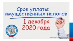 Срок уплаты имущественных налогов физическими лицами в 2020 году не позднее 1 декабря
