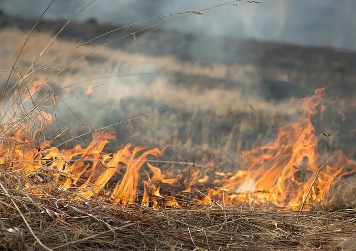 С 12 по 14 марта 2020 года высокая пожароопасность (ВПО) 4 класса